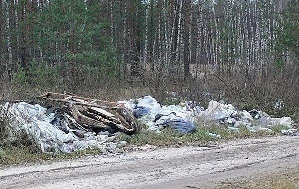 Будешь мусорить на дорогах Беларуси – лишишься транспортного средства