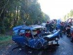 В Гомельском районе погибли два человека в результате лобовой аварии автомобилей Opel и ВАЗа